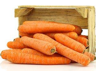 Как хранить морковь зимой в погребе и в домашних условиях: описание способов