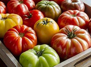 Как хранить помидоры в домашних условиях (в квартире)