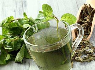Как правильно сушить мяту для чая в домашних условиях: способы и советы