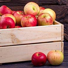 Как сохранить яблоки на зиму свежими в домашних условиях