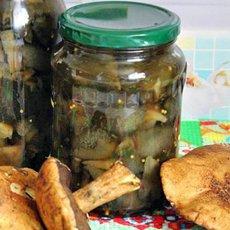 Как мариновать моховики: рецепты домашних заготовок на зиму