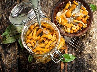 Как солить опята в банках на зиму: простые рецепты домашних заготовок