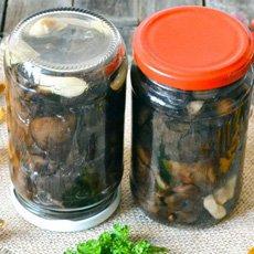 Как солить свинушки в домашних условиях: рецепты