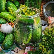 Как засолить огурцы на зиму без уксуса холодным способом: рецепты, подготовка