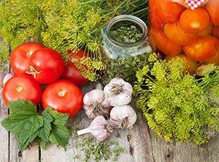 Как солить помидоры холодным способом в банках: пошаговые рецепты домашних заготовок