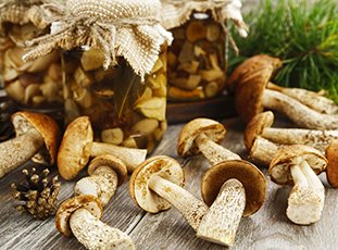 Подберезовики, маринованные на зиму: рецепты приготовления