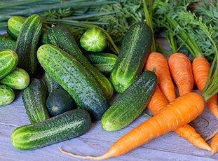 Огурцы с морковной ботвой: рецепты на литровую банку