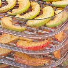 Как сушить яблоки в электросушилке