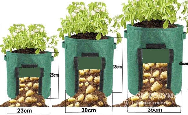 Садовый мешок для выращивания корнеплодных овощей