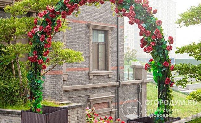Металлическая садовая арка для плетистых растений