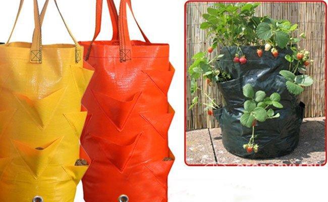 Мешок для выращивания клубники с несколькими отверстиями